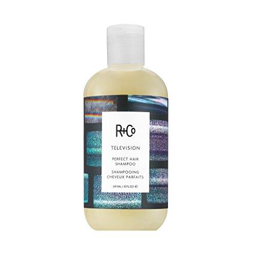 Price comparison product image R+Co Television Perfect Hair Shampoo,  8 fl. oz.