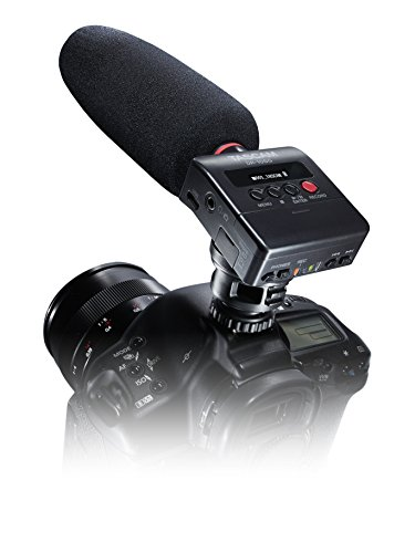 Tascam DR-10SG Camera-Mountable Audio Recorder with Shotgun Microphone (Best Dslr Audio Recorder)