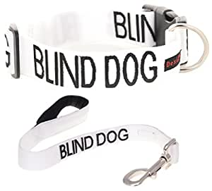 BLIND DOG White Color Coded Alert Warning L-XL S-M Buckle Dog Collar and 2 4 6 Padded Foot Leash Sets (No/Limited Sight) PREVENTS Accidents By Warning Others of Your Dog in Advance (L-XL Collar + Short 2 Foot Leash)