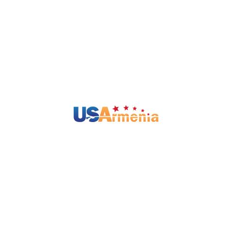 Av Solutions (US Armenia)
