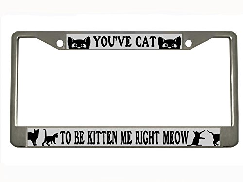 You've Cat to Be Kitten me Right Meow chrome Metal for sale  Delivered anywhere in USA