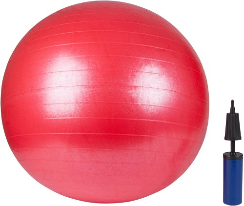 Trademark Innovations Exercise Ball Pump