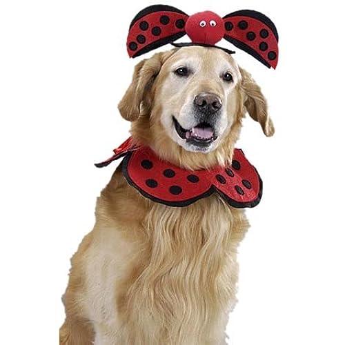 pet lady bug dog halloween costume size large