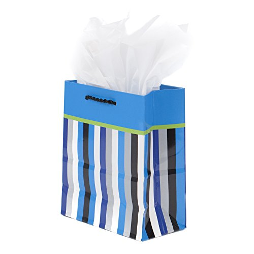 Hallmark Small Gift Bag with Tissue Paper (Blue Stripes)
