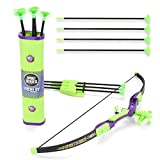 EXERCISE N PLAY Sport Series Archery Shooting Toy Green Bow & Arrow Play Set for Kids with Shoulder-Strapped Quiver and 12 Suction Cup Arrows