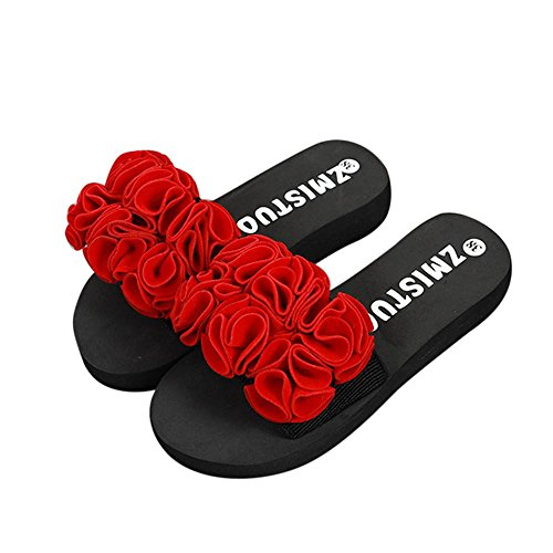 Price comparison product image Han Shi Fashion Sandals,  Women Flower Summer Slipper Casual Flip Flops Beach Shoes (Red,  7.5)
