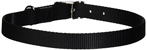 Dogit Nylon Single Ply Dog Collar with Buckle, Large, 22-Inch, (Single Ply Dog Collar)