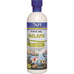 Pondcare 176B 16 Oz MelaFix® Pond Antibacterial & Cleaner