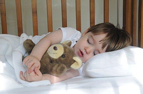 KP Linen 2 Set Kids Toddler Travel Pillow Cases 100% Egyptian Cotton - Pillows Sized 14'' x 20'', Zipper Closure White Solid by KP Linen (Image #2)