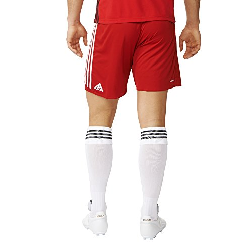 Adidas Mens Climacool Regista 16 Short Small Red/White