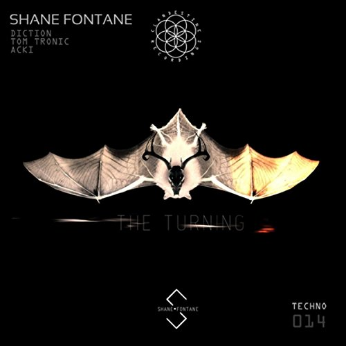 Amazon.com: The Turning (Diction Remix): Shane Fontane: MP3 Downloads