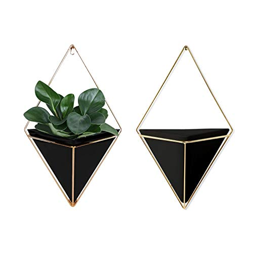 Geometric Wall Planter Set of 2, Decorative Hanging Planters with Brass Wall Decor Frame, Modern Wall Plant Holders in Black, Terrarium Planters for Succulents, Cactus Plants, Wall Plants & More