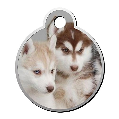 XInhaoLEI Husky Baby Dog Tags Cat Tags Personalized Double Sided Stainless Steel Round Pet ID Tag (Pattern Uconn)