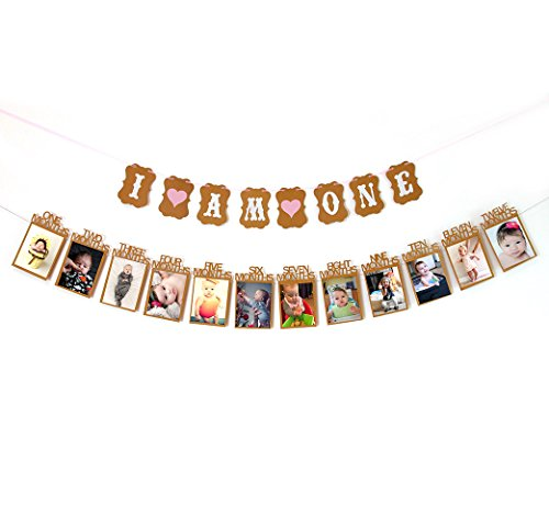 first-birthday-decorations-for-girls-i-am-one-banner-12-months-photo-banner-fast-amazon-logistics-an