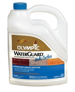 Olympic Waterguard Multi- Surface Waterproofing Clear Sealant