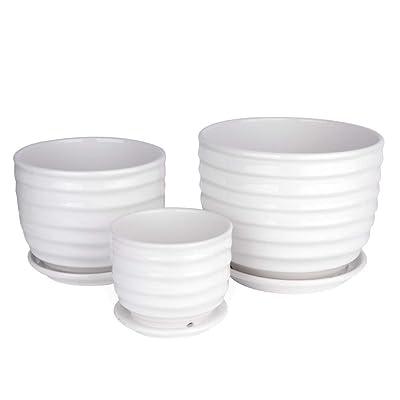 Betrome Ceramic Garden Flower Plant Pot Set of 3, Small to Medium Sized Round Flower Pot: Garden & Outdoor