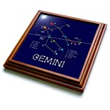 3dRose Alexis Design - Constellations of stars - Gemini Twins Zodiac asterism. Star colors, names. Elegant astronomy - 8x8 Trivet with 6x6 ceramic tile (trv_286116_1)