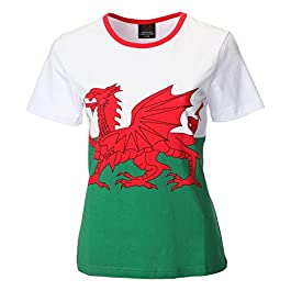 FASHION REVIEW Womens Welsh Cymru Wales Skinny FIT Ladies Flag Print T-Shirt TOP