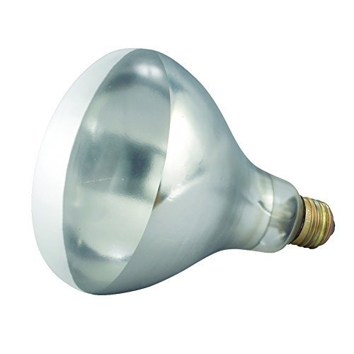 Winco - Bulb for Heat Lamp, Replacement Bulb for EHL-2, EHL-BW, Clear, 250W by Winco