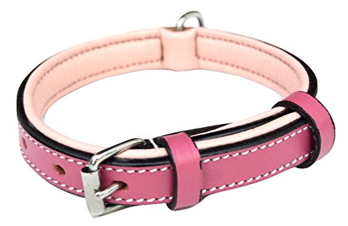 Soft Touch Collars Leather Puppies