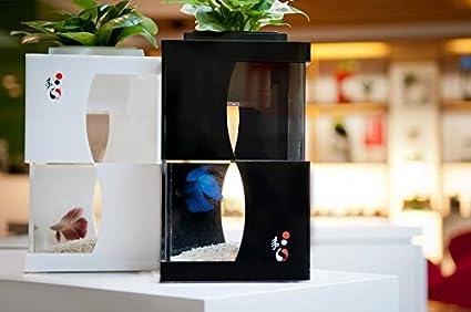 Yi 4 Aquaponics System Home Office Decor Interior Design Indoor Farming Eco  Betta Tropical Fish Tank