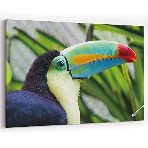(Tropical Bird Canvas Prints Wall Art,Costa Rica Painting Wall Art Picture Print on Canvas,18