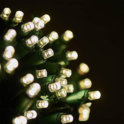 Green Led Dome Christmas Lights
