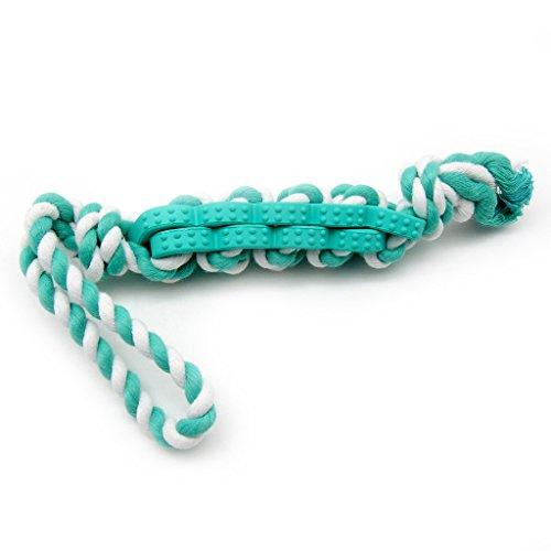 SymbolLife Tau Hundespielzeug kauen Hundespielzeug Wurfspielzeug Kauspielzeug Interaktives Spielzeug Baumwoll-Seil mit Naturgummi verflochten,48,3cm, Blau