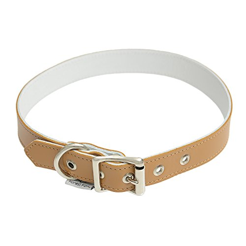 Genuine Leather Designer Dog Collar by Honest Paw - Caramel - Size 22