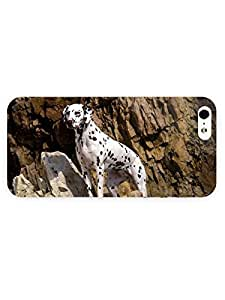 3d Full Wrap Case for iPhone 5/5s Animal Dalmatian On The Cliff