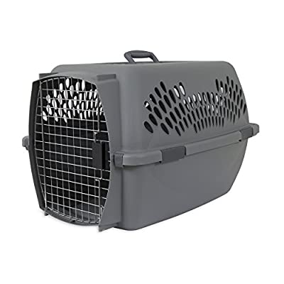 Aspenpet Pet Porter Kennel, For Pets Up To 10 pounds and Under, Light Gray