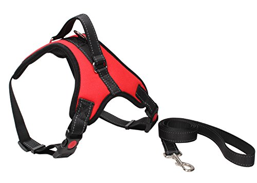 Adjustable Large Dog Collar Leash Harness for Walking Running Training DH002 (Large, Red)