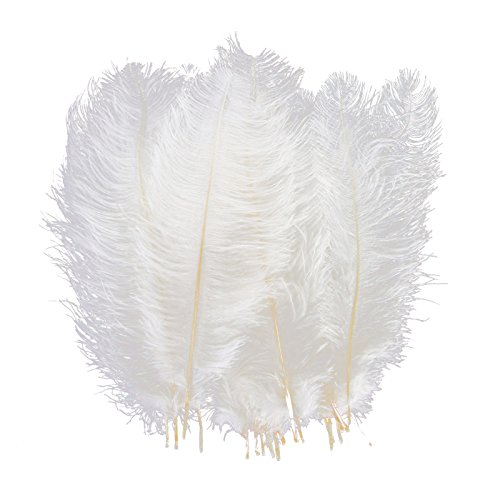 AWAYTR Natural 10-12 inch(25-30cm) Ostrich Feathers Plume for Wedding Centerpieces Home Decoration White-10Pcs