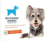 Wisdom Panel Dog DNA Test Kit - Canine Breed Identification and Ancestry Information