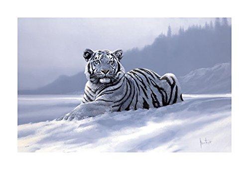 Spencer Hodge Siberian Tiger - 2