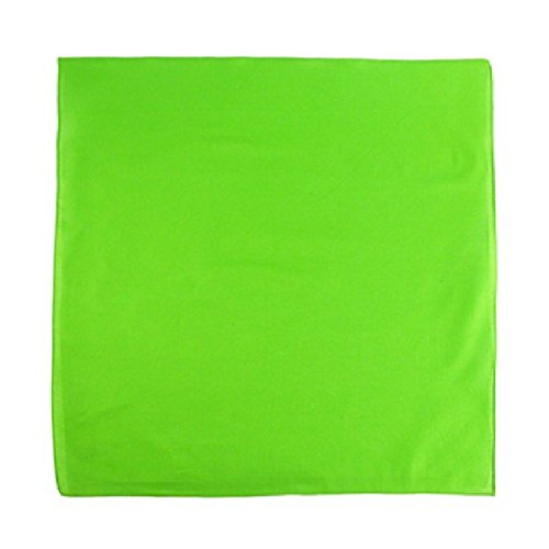 Pack of 10 Daily Basic Plain 100% Polyester
