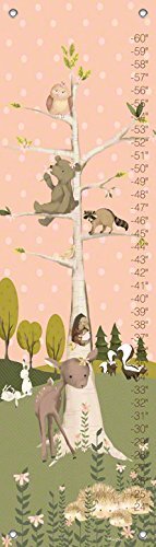 Oopsy Daisy Growth Charts Woodland Pals Girl by Meghann O'Hara, 12 by 42-Inch (Canvas Growth Chart Woodland)