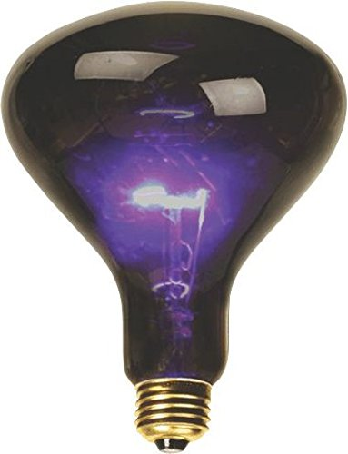 DEEJAYLED BL100 Mushroom Shaped Black Light