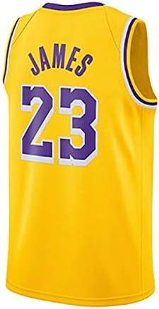 Camiseta de Lebron James, Los Angeles Lakers, 23, Lebron ...