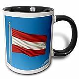 3dRose Carsten Reisinger Illustrations - Flag of Austria on a flag pole with blue sky Austrian - 11oz Two-Tone Black Mug (mug_157037_4)