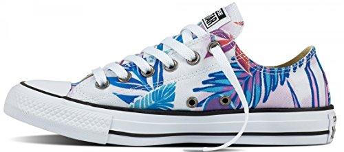 Fresh Cyan STAR Chucks CONVERSE Magenta ALL Schuhe Designer SwxpwCqX