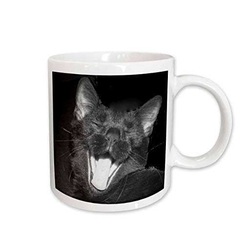 3dRose B/W Halloween Black Cat Yawning Ceramic Mug, -