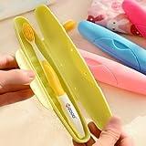 Buckle Up Travel Toothbrush Holder (Set Of 2 Pcs)