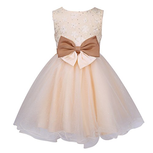 Colorful House Girls' Embroidery Flower Formal Party Princess Bridal Dress, Champagne, Size 4 for US (Gold Fancy Dress)