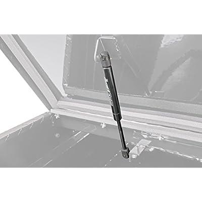Dee Zee DZTBSHOCK1 Tool Box Replacement Shock: Automotive
