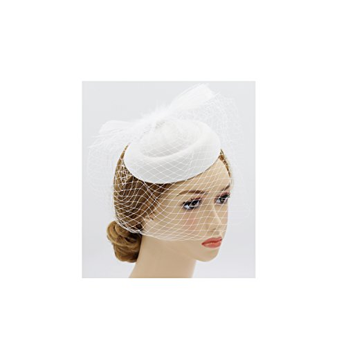 Wheebo Fascinator Hat Flower Feather Mesh Net Veil Party Wedding Headband for Women Girls (D-White) by Wheebo