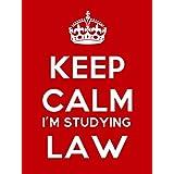 Keep Calm Im Studying Law Keyring - 5cm x 3.5cm by Artform Prints