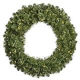 Vickerman 30'' Grand Teton Artificial Christmas Wreath with 50 Warm White LED Lights