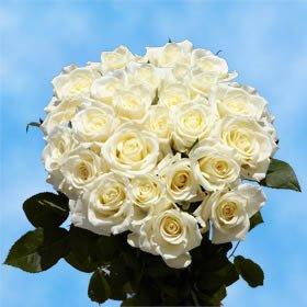 - GlobalRose 2 Dozen White Roses - Extremely Exciting!