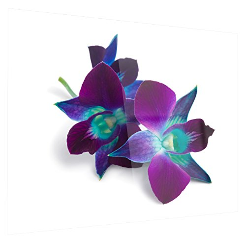 Designart MT14232-28-12 Deep Purple Orchid Flowers on White - Flowers Glossy Metal Wall Art - 28x12,Purple/White,28x12